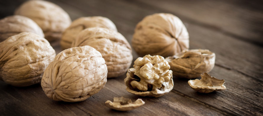 Hospital Clinic of Barcelona and Loma Linda University: Regularly snacking on walnuts cuts artery-clogging cholesterol