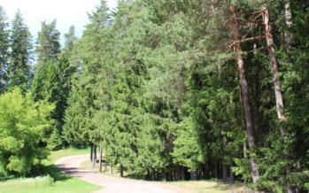 Helena-Reet: Vacation (vol4) – Visiting lake Võrtsjärv, Paistu Cemetery and Männiku Metsatalu in Intsu village